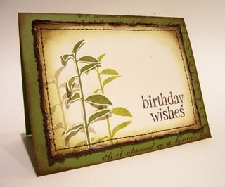 Meg Shumaker - birthday wishes stems & grass