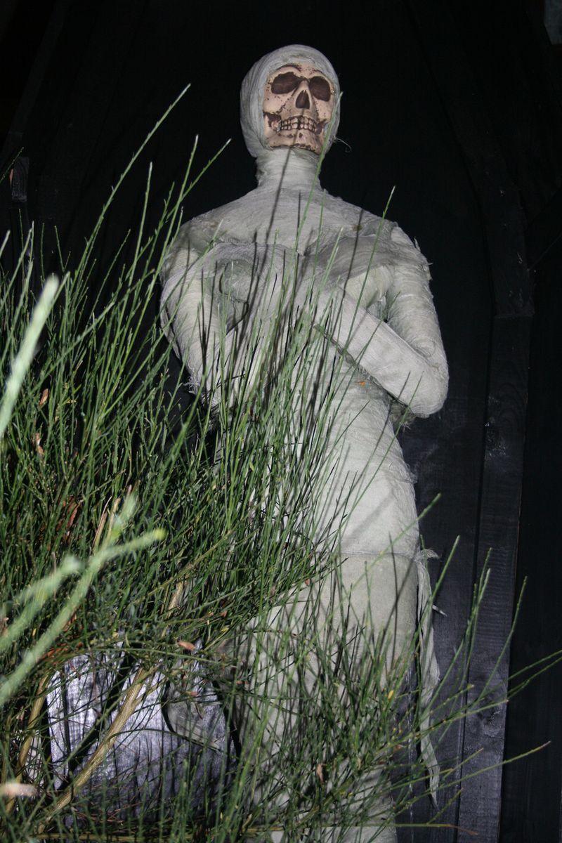 Mummy night
