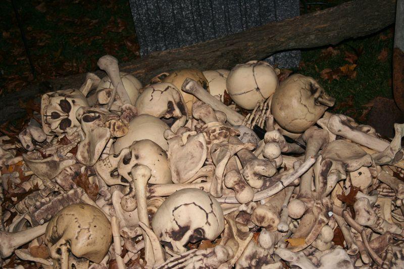 Bones night