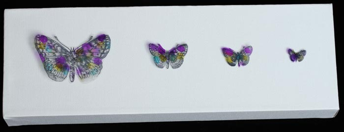 Lesley Cooper - Acetate Butterfly Canvas