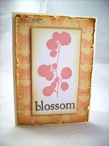 Joy_Taylor_card_-_Blossom_and_vintage_butterfly