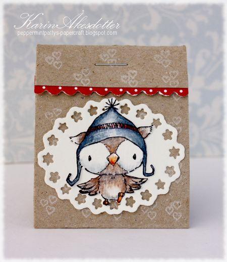 Karin Akesdotter - Snowy Gift Box