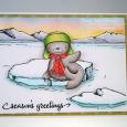 Tracy MacDonald - Snow Cap Iceberg Card