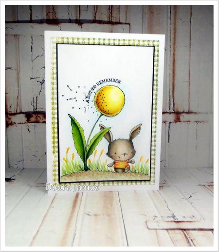 Debra James _ Willa & Wishing Flower Card