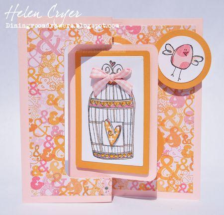 Helen Cryer - Birdcage 1