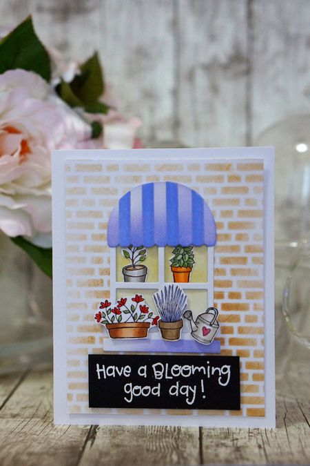Sally On - Potted Plants