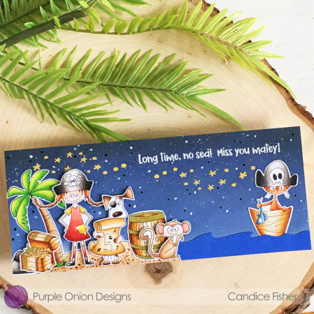 Candice 0814-girl pirate dog with map cat in boat monkey wood barrel treasure chest tropical island sea rock set SYS starry night side