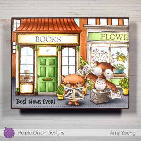 Amy Young - Alex and Brian Book Store
