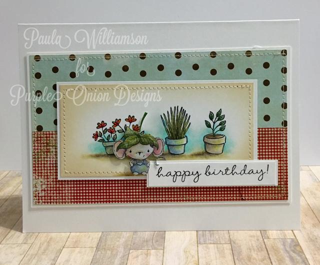 Paula Williamson - Elliot Happy Birthday Card