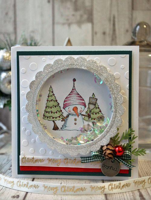 Sally On - Snow Shaker Card